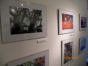 Fotókiállítás, fotópályázat díjátadó