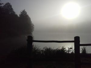 Bőhm Judit - Ködös hajnal