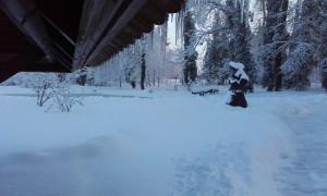 Téli-Lábod-01