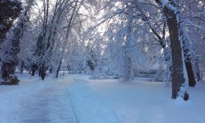 Téli-Lábod-02
