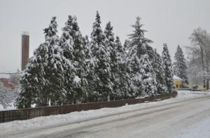 Téli-Lábod-08