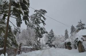 Téli-Lábod-11