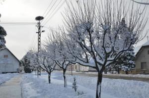 Téli-Lábod-20